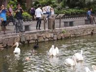 稻城去稻城亚丁湾旅游应该注意什么