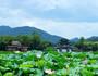 杭州4日游,杭州4日游费用-中青旅遨游网