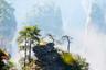 【美丽中国】湖南凤凰/天门山宝峰湖//张家界/芙蓉镇双飞5日游【独立小团,中青旅2人起发独立发团;】