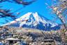 日本:东京+横滨+富士山+镰仓5日游【三古都/日式温泉/免费托运2*23公斤】