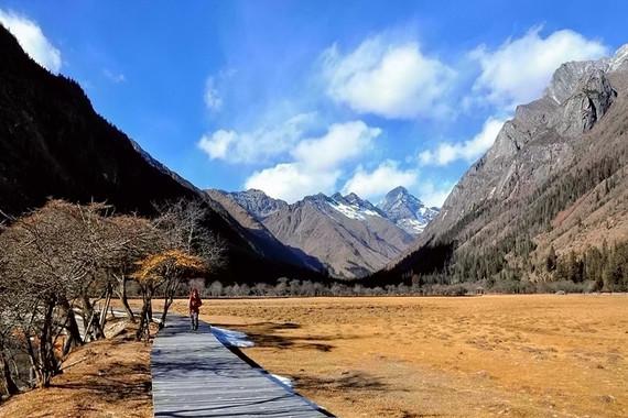 【西藏当地参团】林芝三日游【巴松措/大峡谷/鲁朗林海/卡定沟】