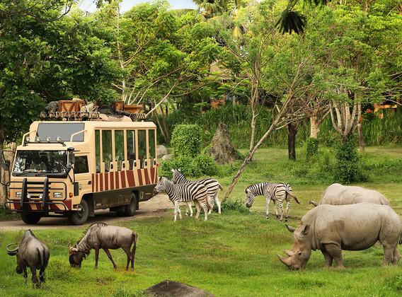 【奇妙動物夜】巴厘島5晚7天半自助【1晚野生動物園/4晚當地海邊五星/1日專屬車導】